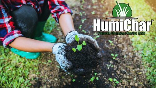 humichar organic soil treatment